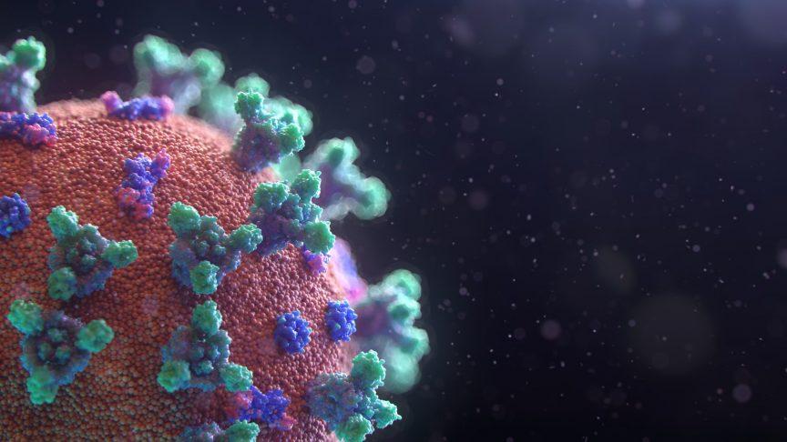 ecommerce experts discuss the coronavirus